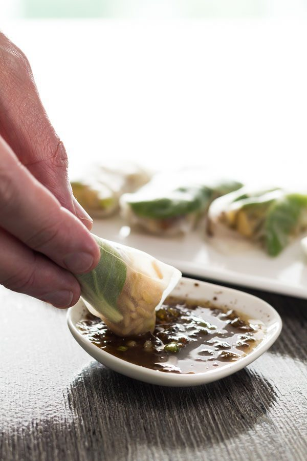 Spring Roll Dipping Sauce Spoonabilities-11