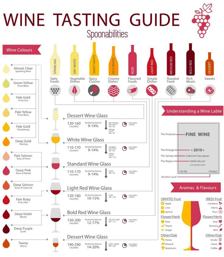 Wine Tasting Guide. Learn what glass to use, the different colors of wine, and what to pair with them.