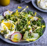 Yellow Pea Shoot Salad Recipe with Champagne Mustard Vinaigrette