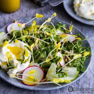 Yellow Pea Shoot Salad Recipe with Champagne Mustard Vinaigrette has a tender texture with fresh spring pea taste and a peppery, nutty, mustardy undertone. Spoonabilities.com