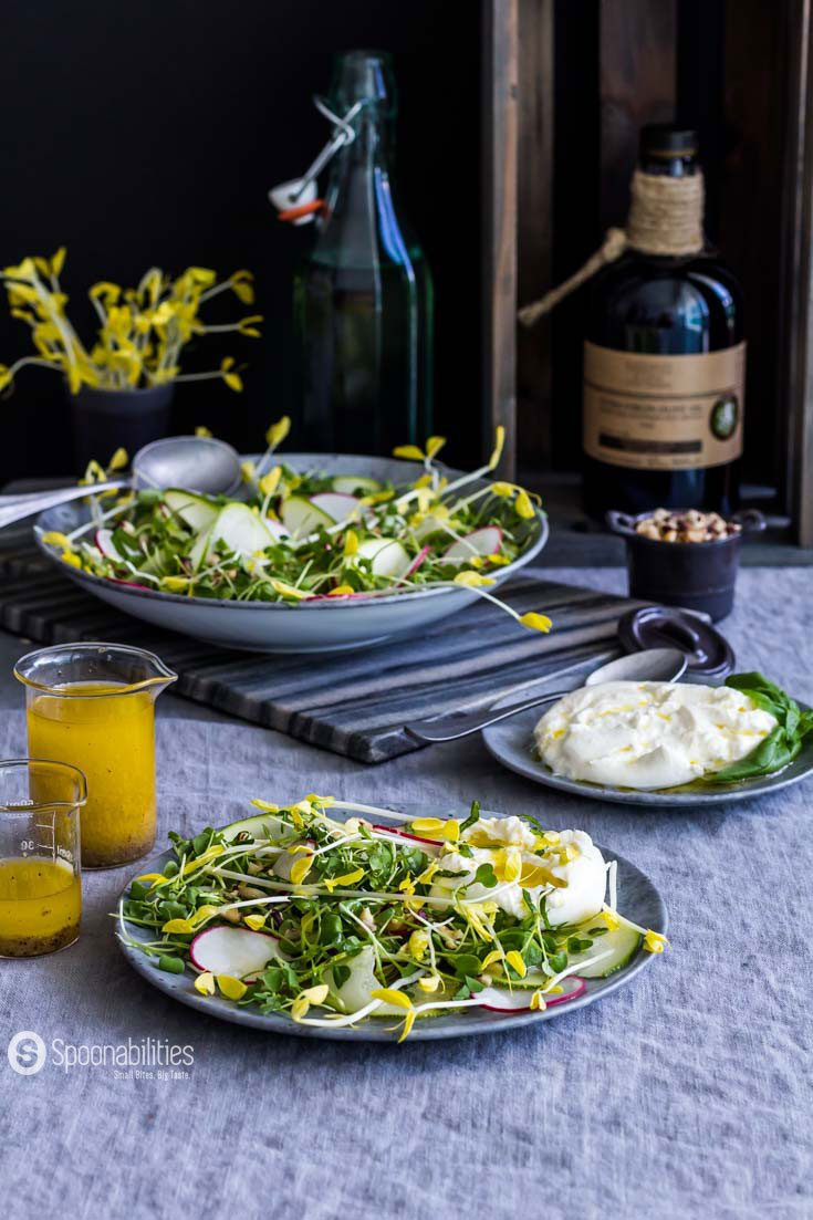 The Yellow Pea Shoot Salad Recipe with Champagne Mustard Vinaigrette has a tender texture with fresh spring pea taste and a peppery, nutty, mustardy undertone. Spoonabilities.com