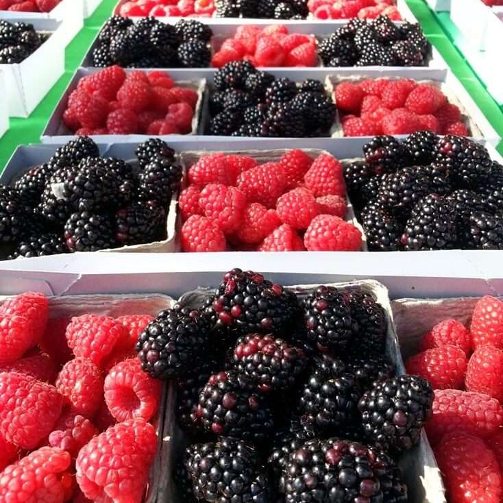 Raspberries & Blackberries in tray showing quality of Scandinavian Delights Fruit Spreads. Spoonabilities.com