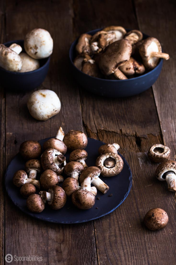 This Mushroom Stuffing recipe is packed with fresh herbs. Some Mushrooms benefits are Fight Cancer, Improve Immunity, Reduce Inflammation, Spoonabilities.com