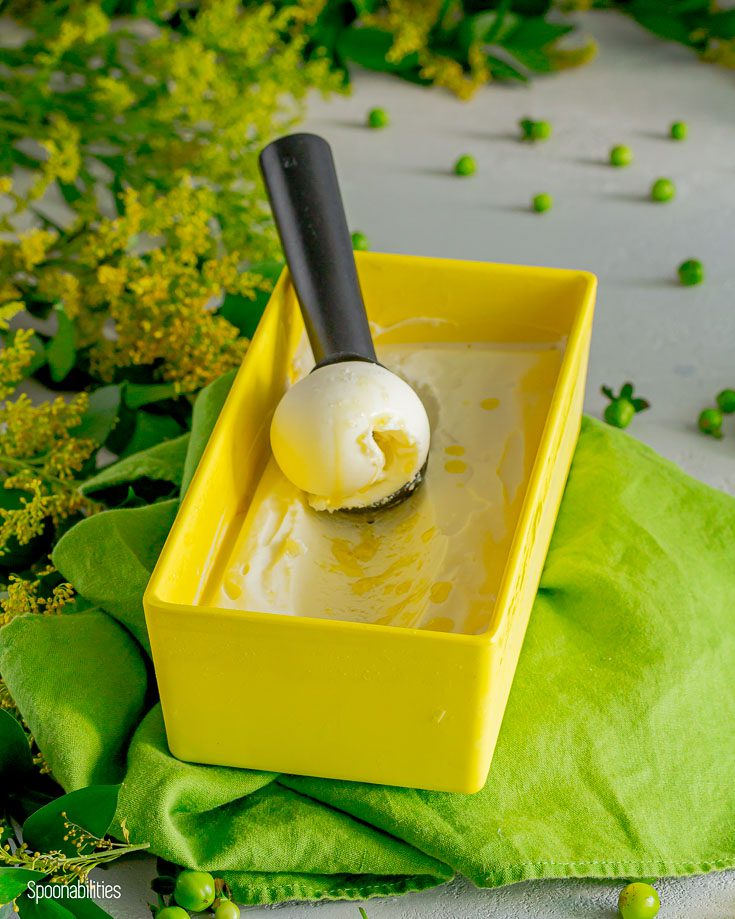 Yellow rectangular ice cream container with homemade ice cream with a scoop inside holding a ice cream ball. The container is on top of a green lime linen fabric. Spoonabilities.com