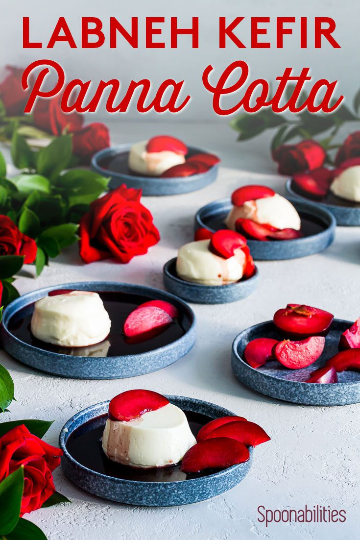 Labneh Kefir Panna Cotta with Red Wine Syrup