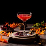Vodka Blood Orange Cranberry Martini | the Bloody Rose Martini