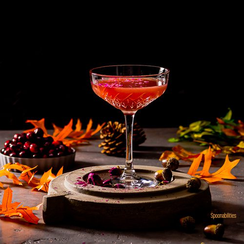 A Cocktail glass on top of a stand with the drink Vodka Blood Orange Cranberry Martini garnished with rose petals. The background is decorated with Fall vibes orange leaves, pine cone and in the back of the photo a small bowl with fresh cranberry. spoonabilities.com