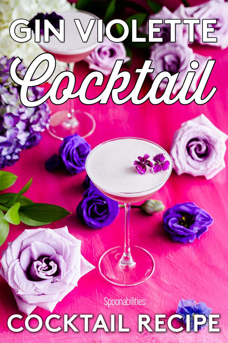 Pink background/surface with different tone of purple and violet color roses. In the center a NUDE Savage coupetini glass with the drink Gin Violette Cocktail. Recipe at Spoonabilities.com