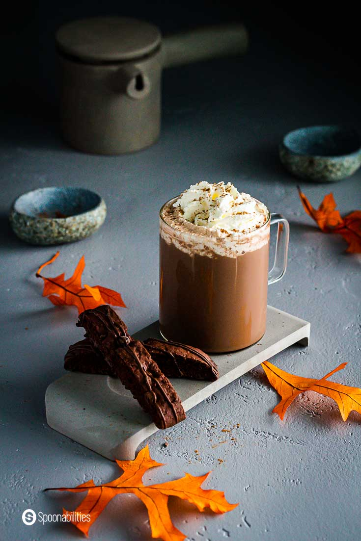 A glass cup on top of a concrete tray, The tray has two chocolate biscotti and in the cup a cafe mocha with whipped cream and maple syrup. The background has some fall leaves and other accessories. Recipe at Spoonabilities.com