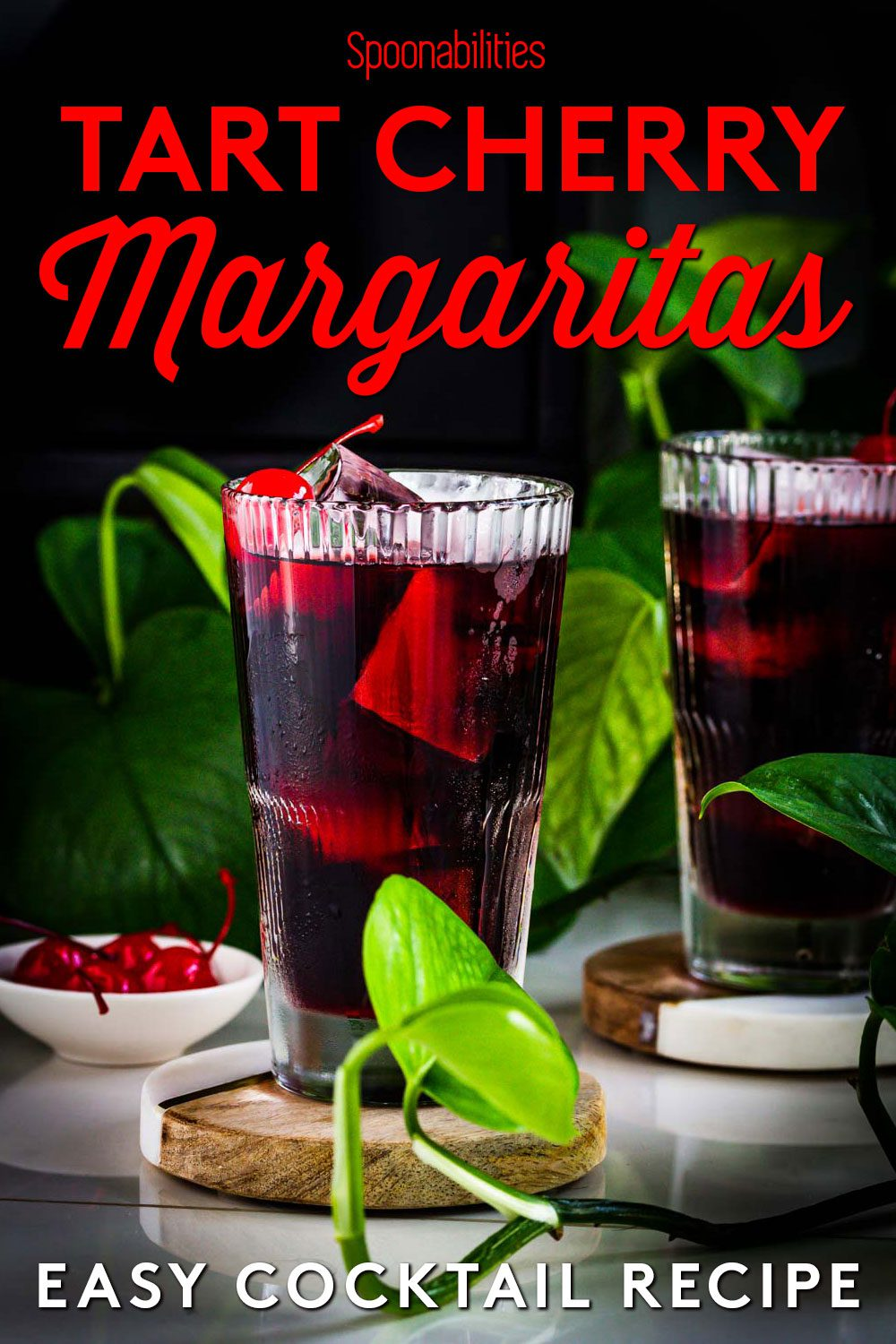 Two tall glasses of tart cherry margaritas around a green plant
